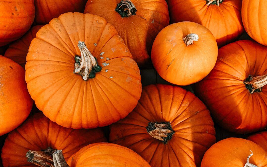 Autumn Offers a Fresh Start!